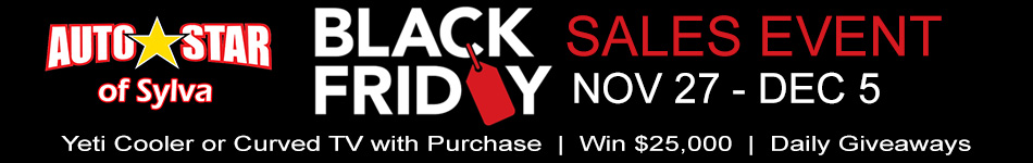 sylva-black-friday-banner