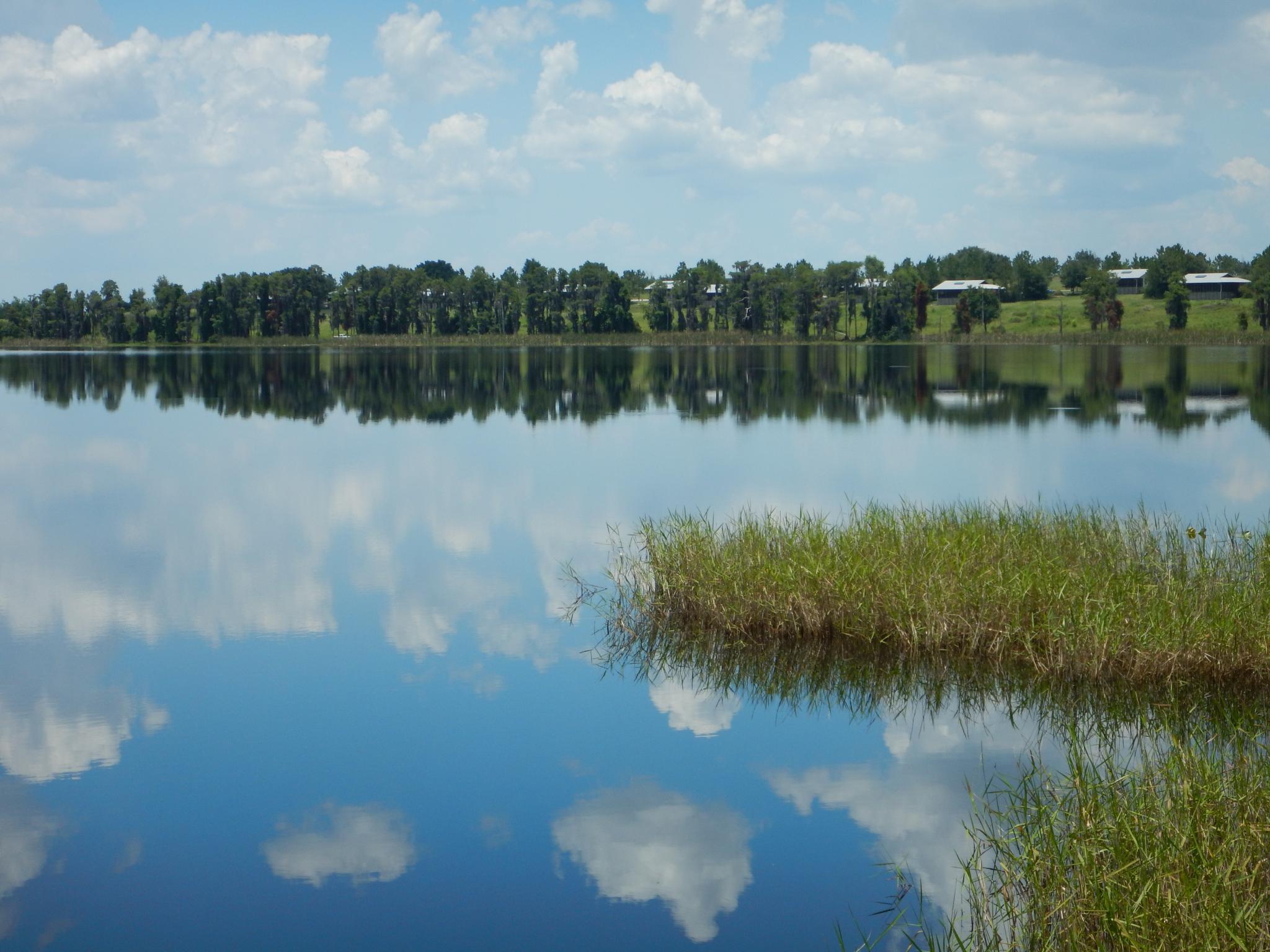 Lake Louisa