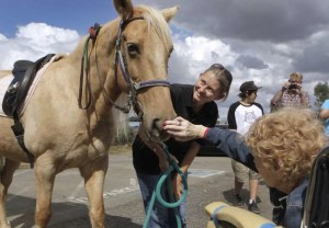 marin therapeutic riding center charity