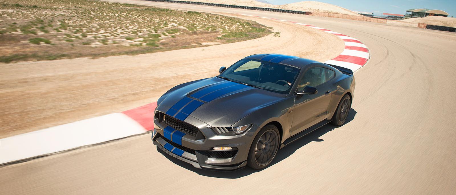 Grey Mustang