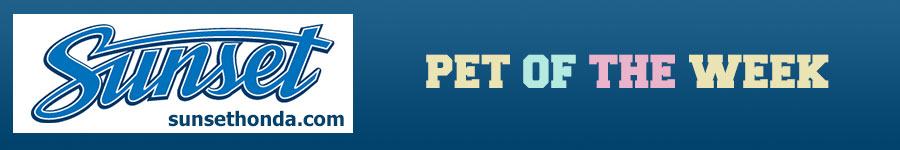 Pet-of-the-Week-Banner