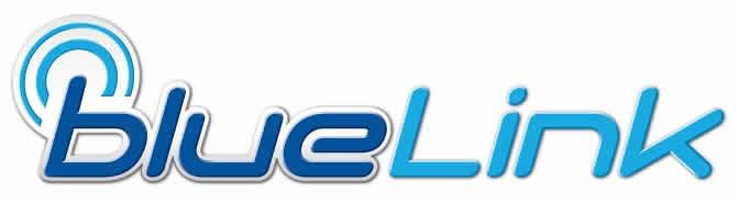 Hyundai BlueLink | Billings Underriner Hyundai